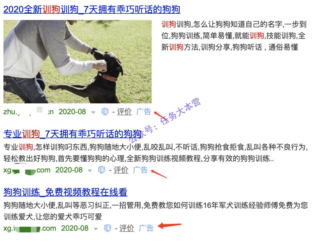 宠物市场:一个可以长期操作的暴利项目插图(5)